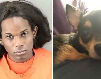 Wakeen Best and the Chihuahua she is accused of killing